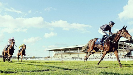 Greatest Racehorses of All Time