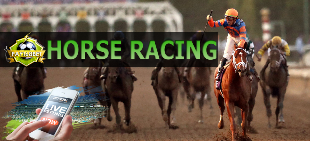 Local horse racing betting for dummies best football betting services